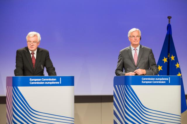 "The ""Direct Effect"" of the Withdrawal Agreement: Do Davis and Barnier Agree?"